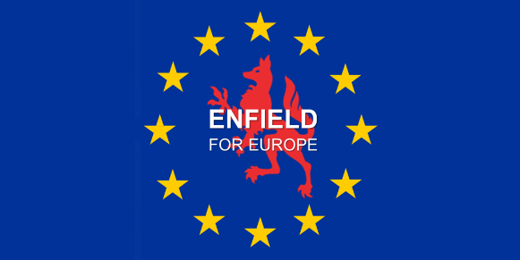 enfield for europe logo on blue