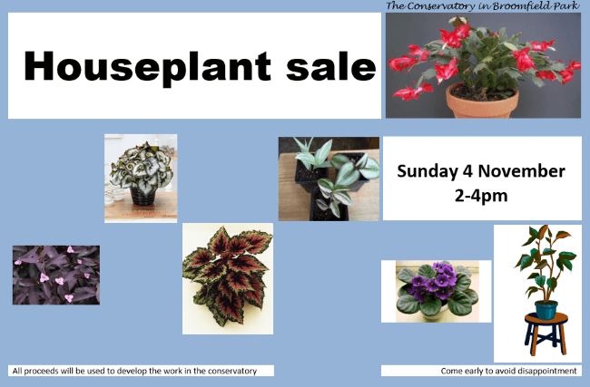 plant sale advert