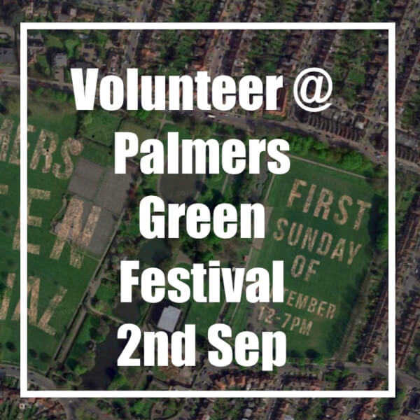 volunteer at pg festival