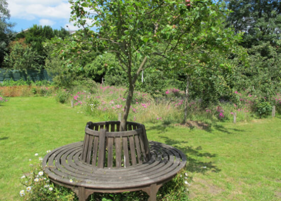 broomfield community orchard seat