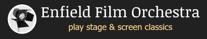 enfield film orchestra