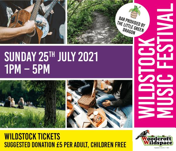 poster or flyer advertising event Wildstock Music Festival