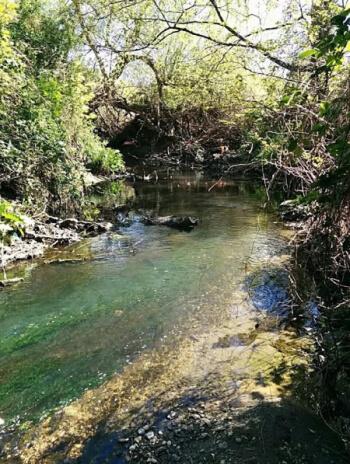 pymmes brook in upper edmonton