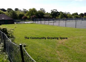 community growing space site