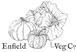 New pick-up points for Forty Hall Farm organic vegetable bags scheme